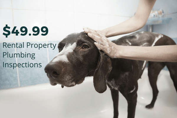 Rental property plumbing inspections